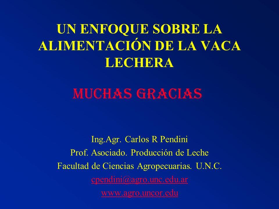 UN ENFOQUE SOBRE LA ALIMENTACIÓN DE LA VACA LECHERA Ing.Agr. Carlos R Pendini Prof. Asociado. Producción de Leche Facultad de Ciencias Agropecuarias.