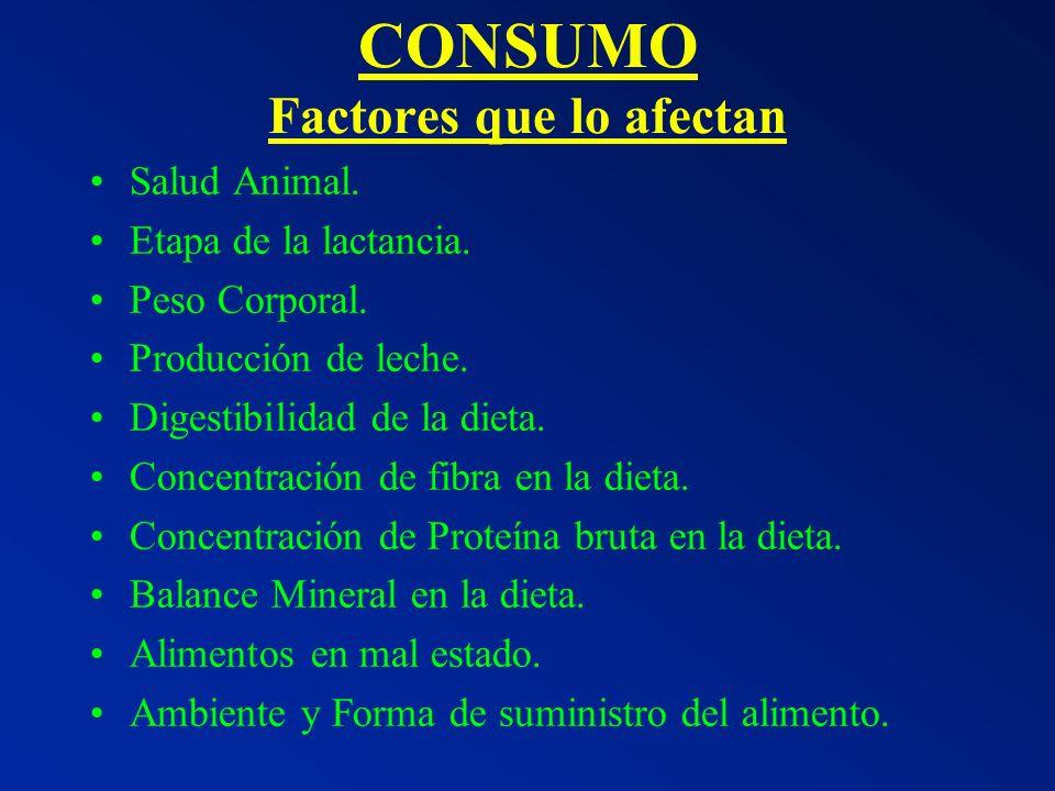 CONSUMO Factores que lo afectan Salud Animal. Etapa de la lactancia. Peso Corporal. Producción de leche. Digestibilidad de la dieta. Concentración de