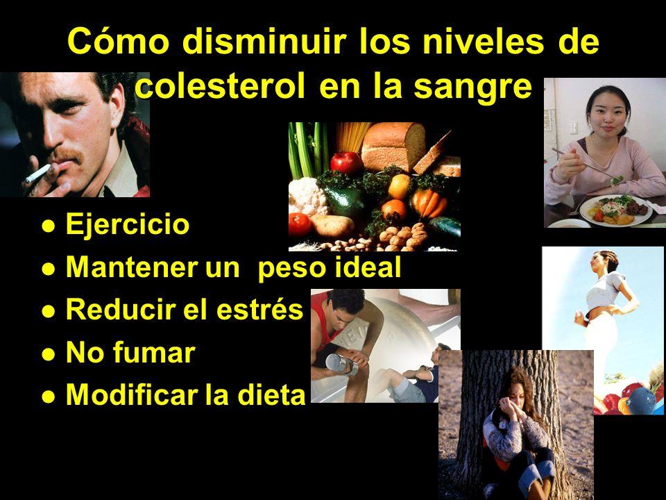 Cómo disminuir los niveles de colesterol en la sangre Cómo disminuir los niveles de colesterol en la sangre Ejercicio Mantener un peso ideal Reducir el estrés No fumar Modificar la dieta Ejercicio Mantener un peso ideal Reducir el estrés No fumar Modificar la dieta