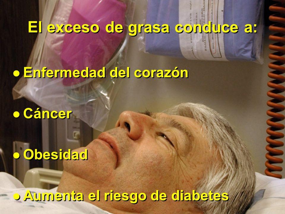 El exceso de grasa conduce a: Enfermedad del corazón Cáncer Obesidad Aumenta el riesgo de diabetes Enfermedad del corazón Cáncer Obesidad Aumenta el riesgo de diabetes