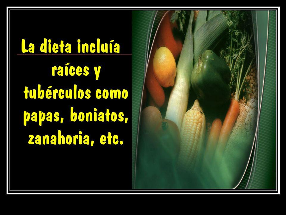 La dieta incluía raíces y tubérculos como papas, boniatos, zanahoria, etc.
