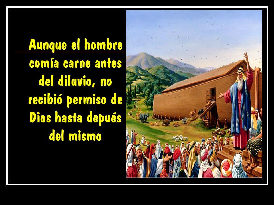 Aunque el hombre comía carne antes del diluvio, no recibió permiso de Dios hasta depués del mismo