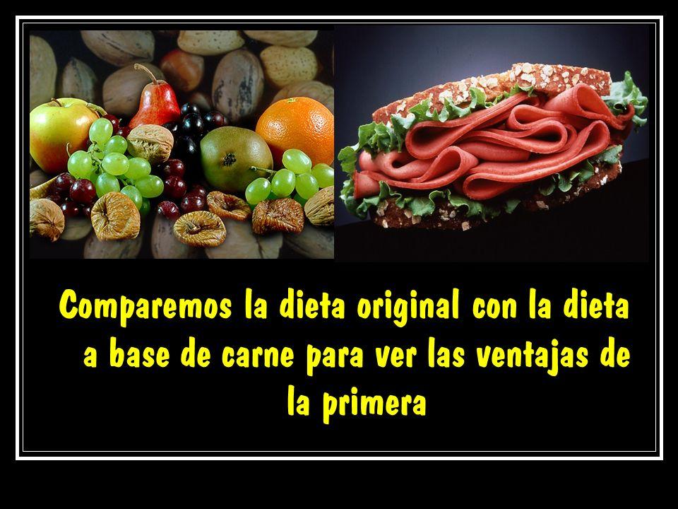Comparemos la dieta original con la dieta a base de carne para ver las ventajas de la primera