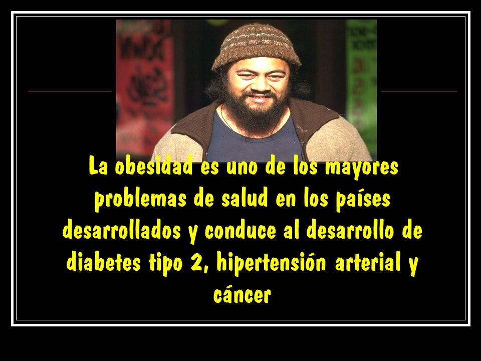 La obesidad es uno de los mayores problemas de salud en los países desarrollados y conduce al desarrollo de diabetes tipo 2, hipertensión arterial y c
