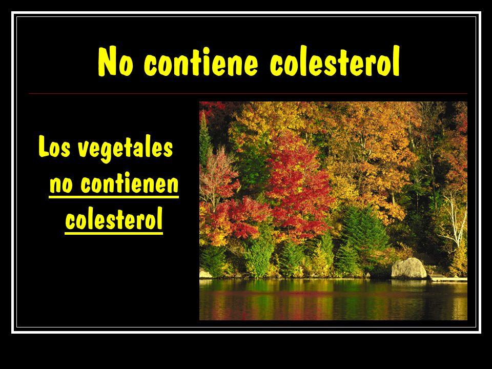No contiene colesterol Los vegetales no contienen colesterol