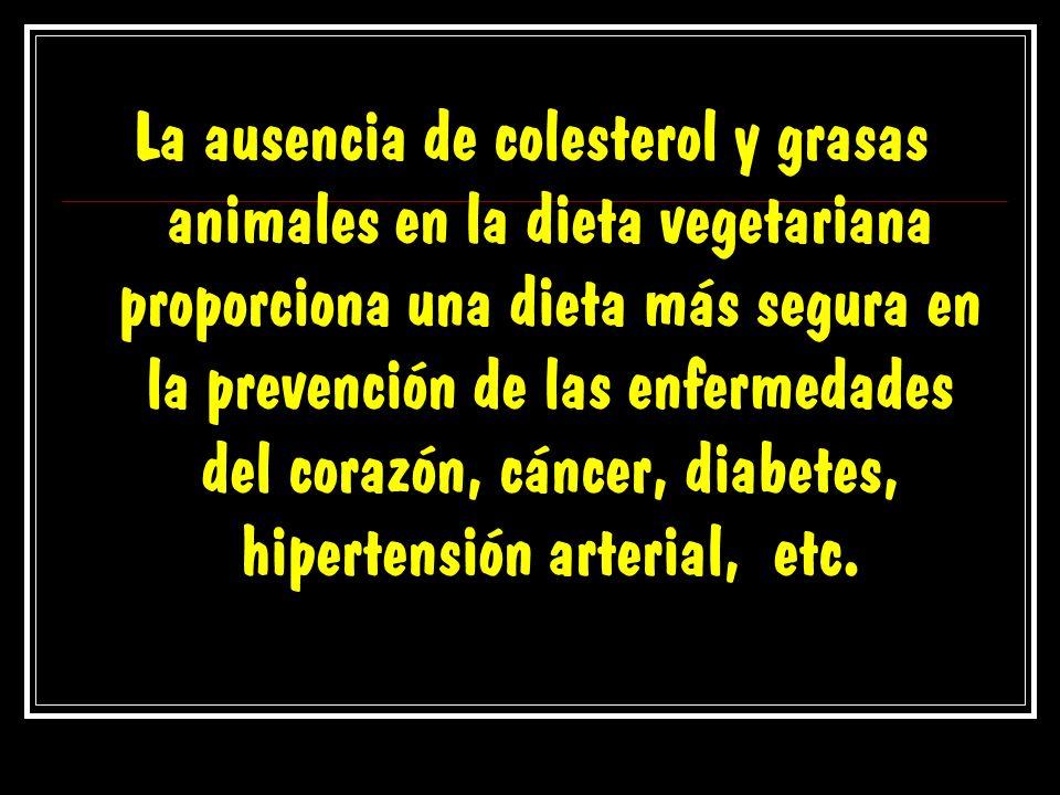 La ausencia de colesterol y grasas animales en la dieta vegetariana proporciona una dieta más segura en la prevención de las enfermedades del corazón,