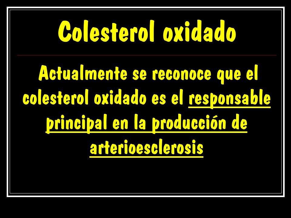 Colesterol oxidado Actualmente se reconoce que el colesterol oxidado es el responsable principal en la producción de arterioesclerosis