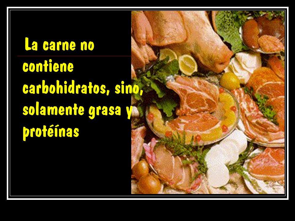 La carne no contiene carbohidratos, sino, solamente grasa y protéínas