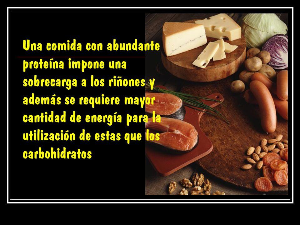 Una comida con abundante proteína impone una sobrecarga a los riñones y además se requiere mayor cantidad de energía para la utilización de estas que