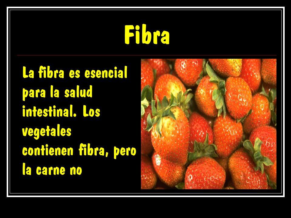 Fibra La fibra es esencial para la salud intestinal. Los vegetales contienen fibra, pero la carne no