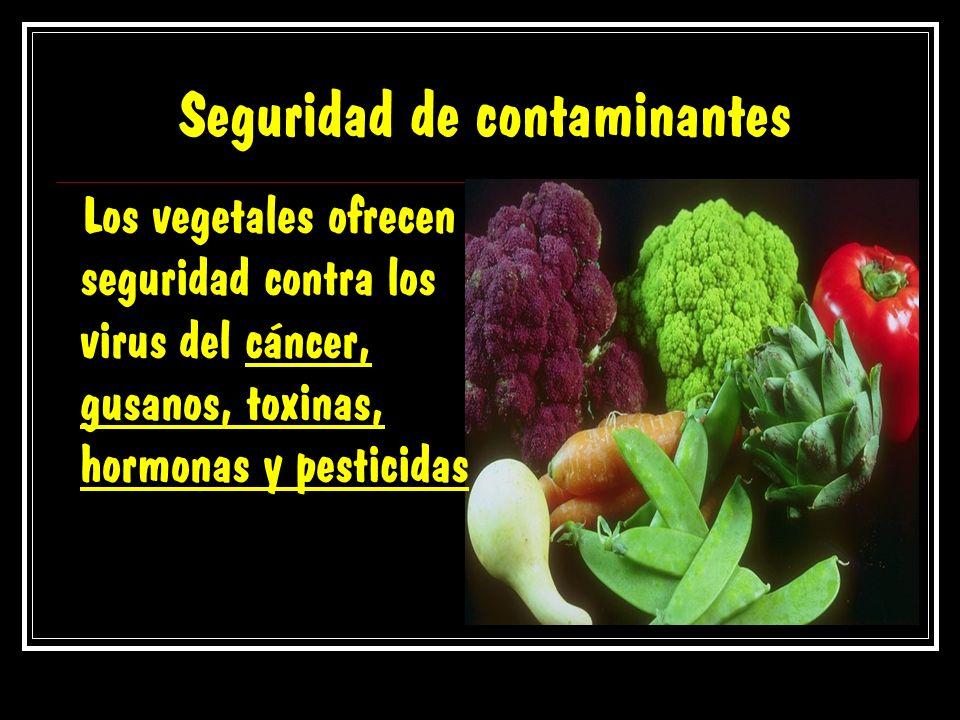 Seguridad de contaminantes Los vegetales ofrecen seguridad contra los virus del cáncer, gusanos, toxinas, hormonas y pesticidas