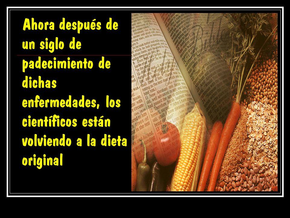 La dieta original En Gén. 1:29 se nos muestra la dieta original dada por Dios al hombre