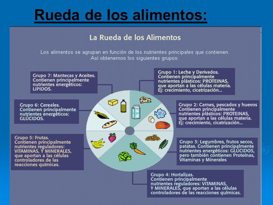 Rueda de los alimentos: Grupo I: leche y derivados FUNCIÓN PLÁSTICA Grupo II: carnes pescados y huevos FUNCIÓN PLÁSTICA Grupo III: patatas, legumbres