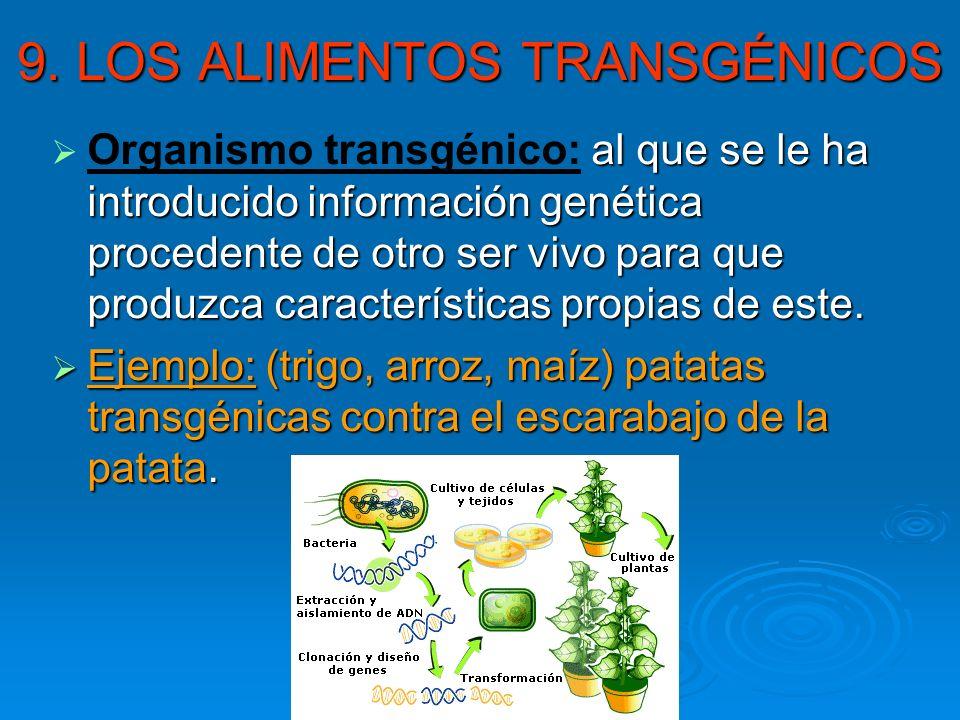 9. LOS ALIMENTOS TRANSGÉNICOS al que se le ha introducido información genética procedente de otro ser vivo para que produzca características propias d