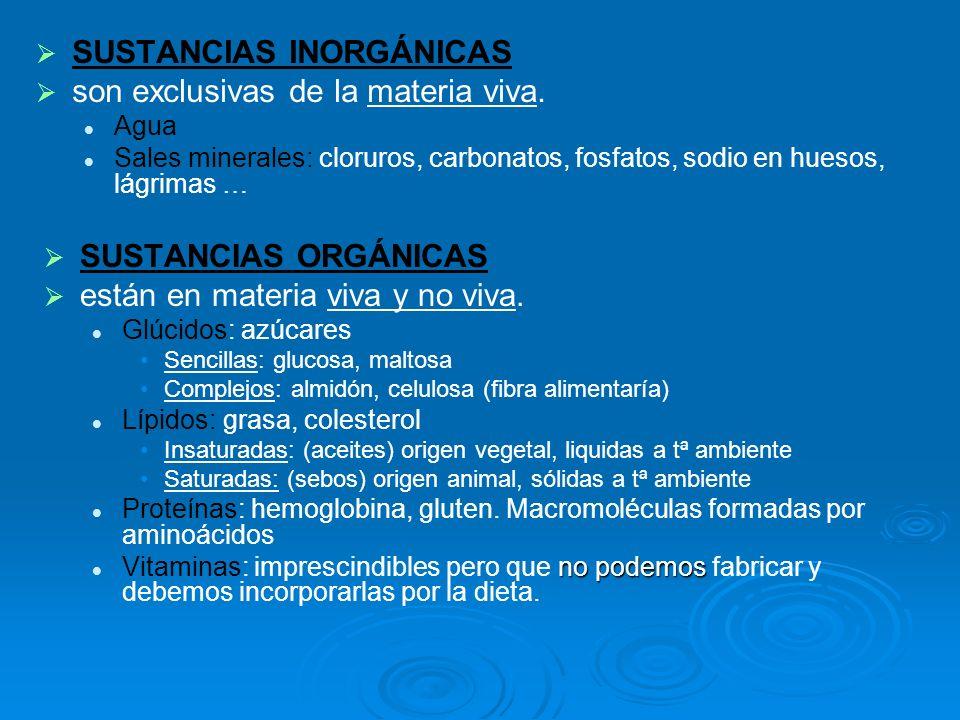 SUSTANCIAS INORGÁNICAS son exclusivas de la materia viva. Agua Sales minerales: cloruros, carbonatos, fosfatos, sodio en huesos, lágrimas … SUSTANCIAS