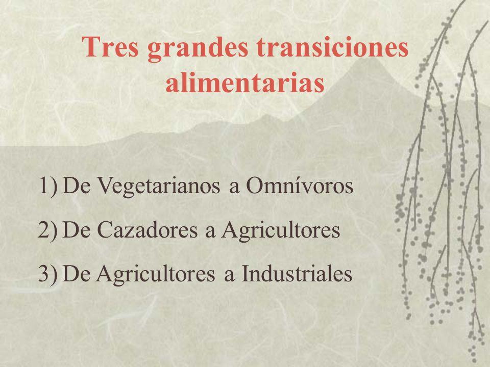 Tres grandes transiciones alimentarias 1)De Vegetarianos a Omnívoros 2)De Cazadores a Agricultores 3)De Agricultores a Industriales