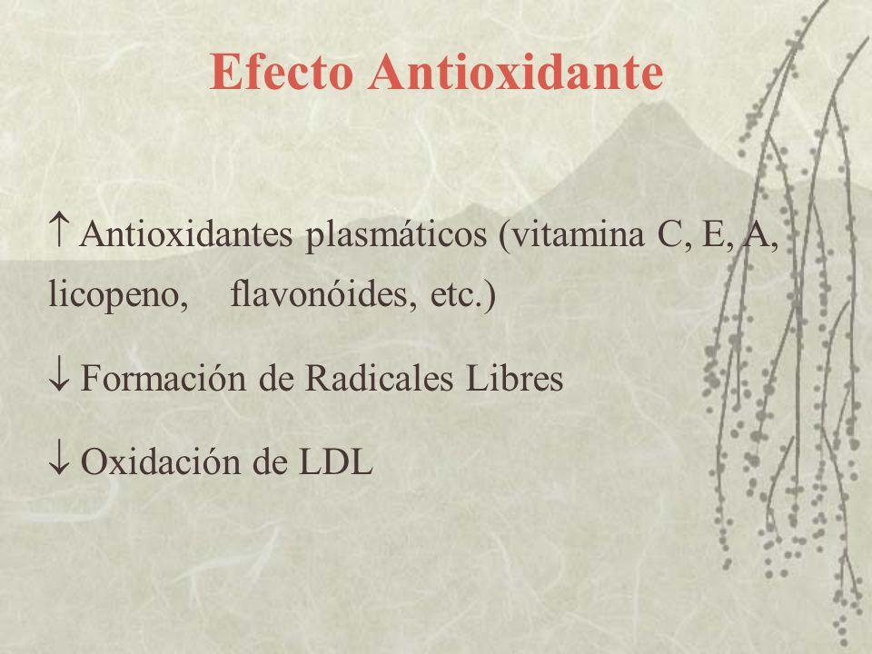 Efecto Antioxidante Antioxidantes plasmáticos (vitamina C, E, A, licopeno, flavonóides, etc.) Formación de Radicales Libres Oxidación de LDL