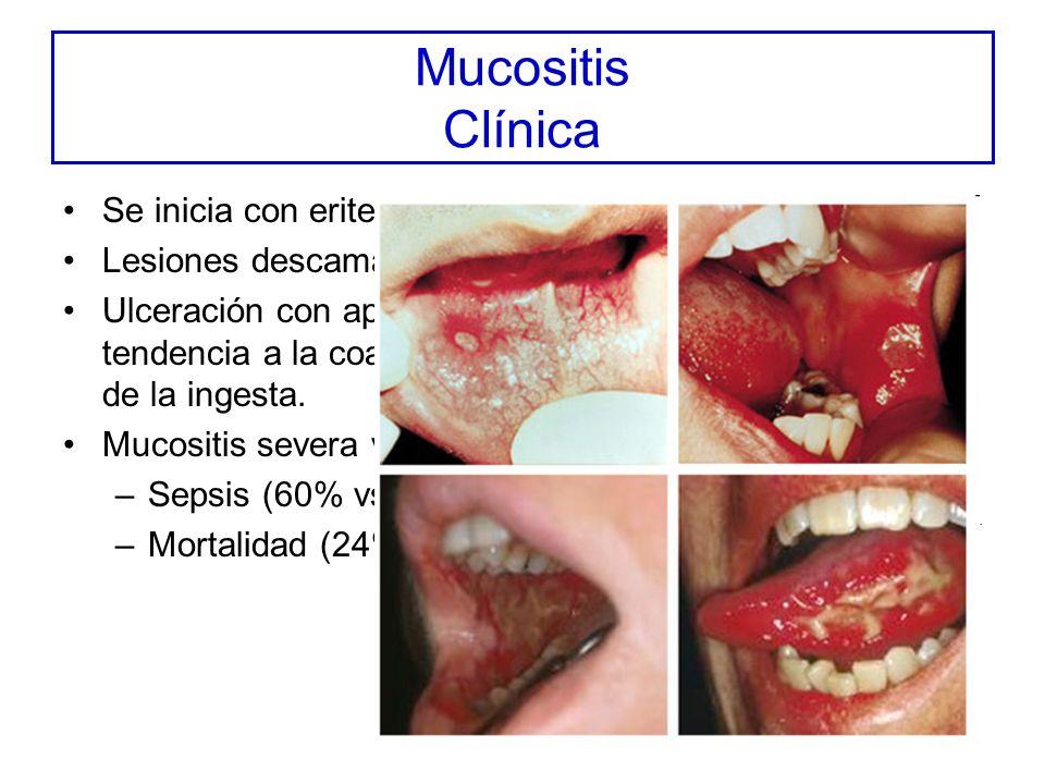 Mucositis Clínica Se inicia con eritema y sensación urente Lesiones descamativas: dolor moderado Ulceración con aparente pseudomembrana con tendencia a la coalescencia.