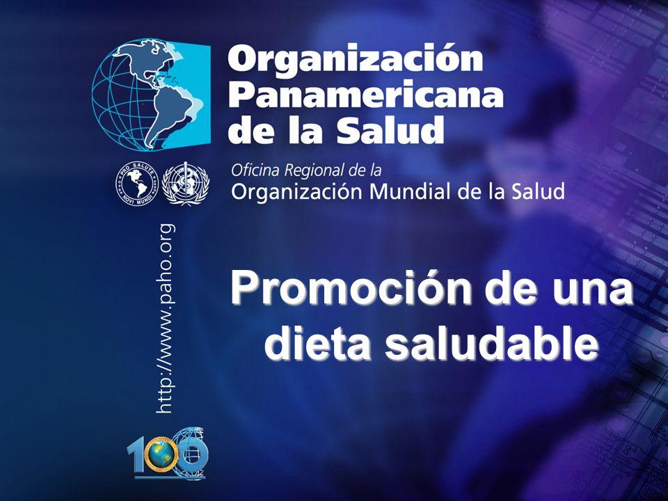 2004 Organización Panamericana de la Salud.... Promoción de una dieta saludable