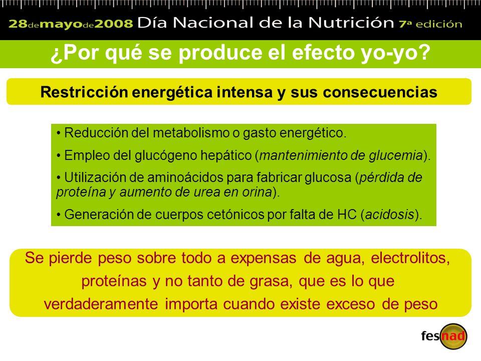 ¿Por qué se produce el efecto yo-yo? Restricción energética intensa y sus consecuencias Reducción del metabolismo o gasto energético. Empleo del glucó