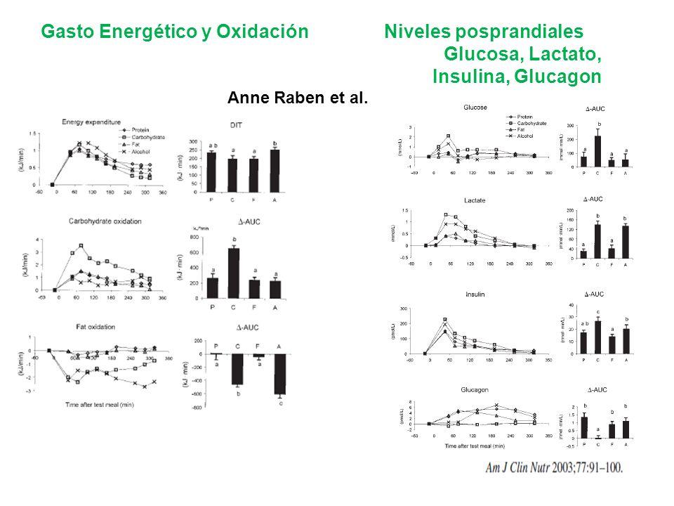 Gasto Energético y Oxidación Niveles posprandiales Glucosa, Lactato, Insulina, Glucagon Anne Raben et al.