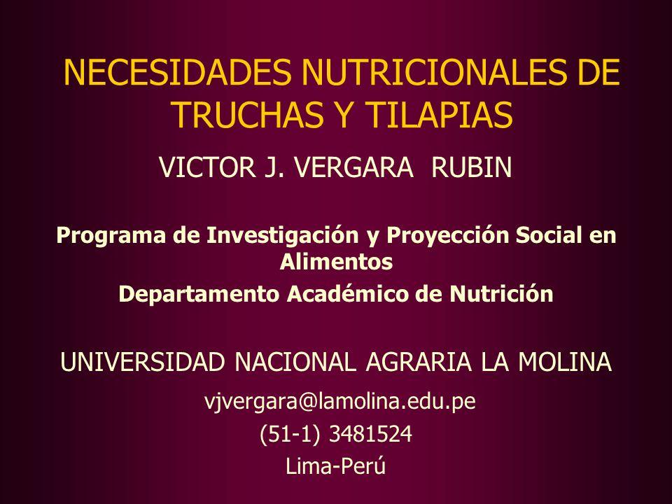 NECESIDADES NUTRICIONALES DE TRUCHAS Y TILAPIAS VICTOR J. VERGARA RUBIN Programa de Investigación y Proyección Social en Alimentos Departamento Académ