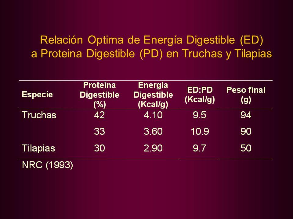 Relación Optima de Energía Digestible (ED) a Proteina Digestible (PD) en Truchas y Tilapias