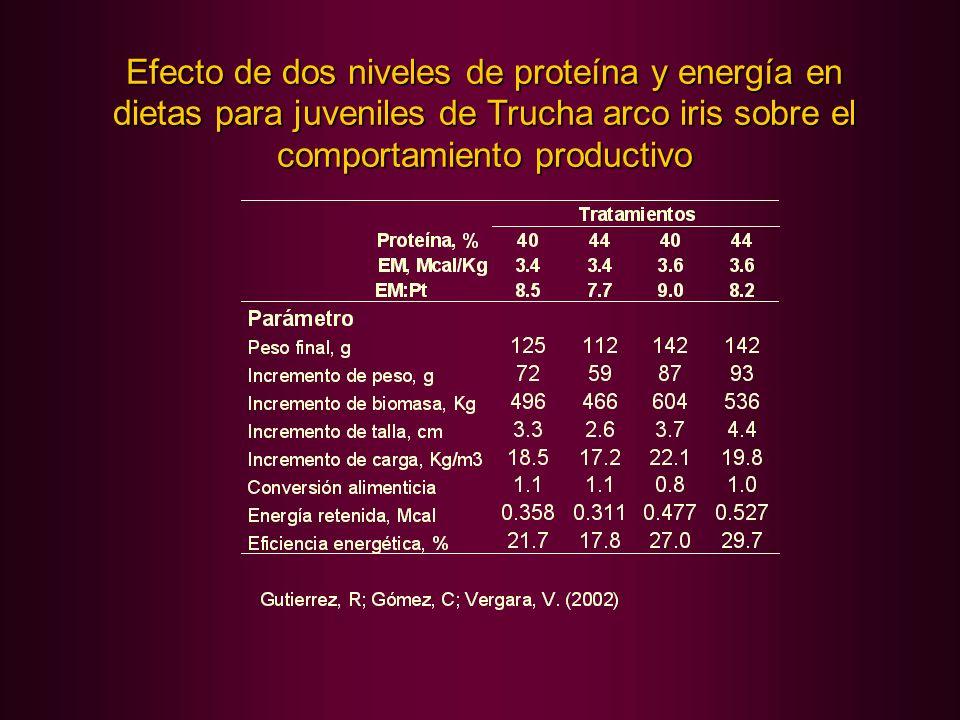 Efecto de dos niveles de proteína y energía en dietas para juveniles de Trucha arco iris sobre el comportamiento productivo