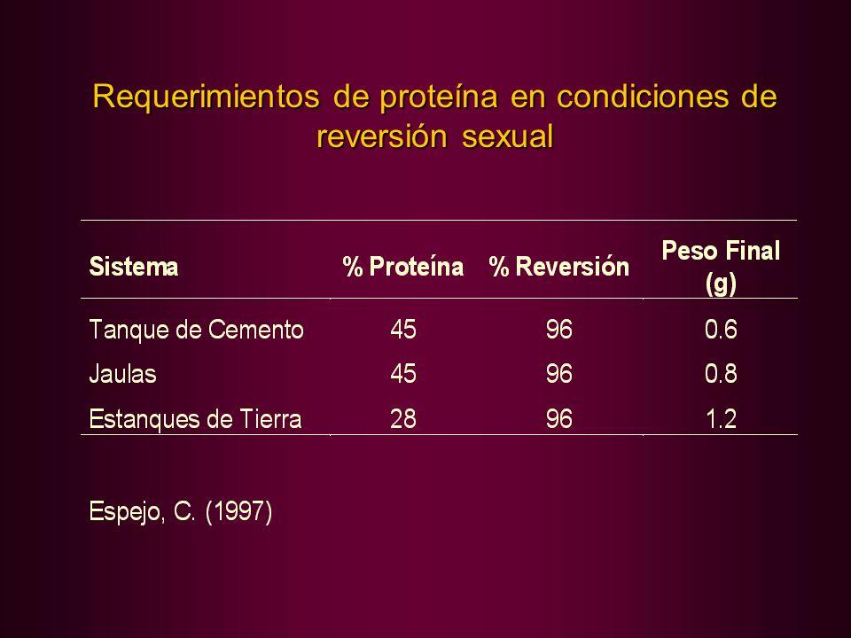 Requerimientos de proteína en condiciones de reversión sexual
