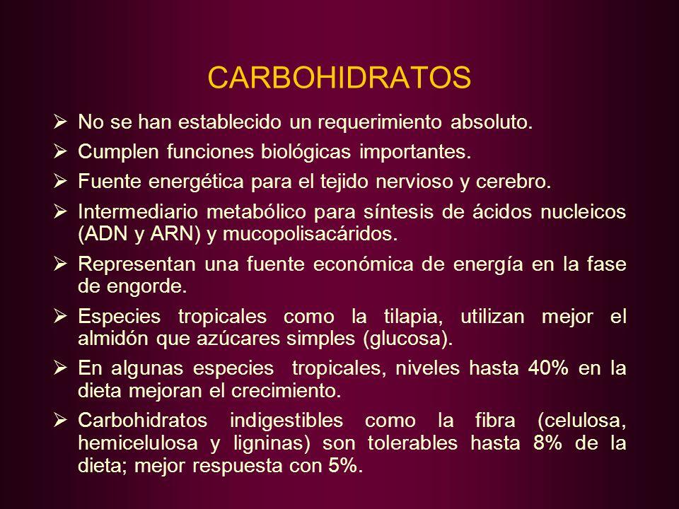 CARBOHIDRATOS No se han establecido un requerimiento absoluto. Cumplen funciones biológicas importantes. Fuente energética para el tejido nervioso y c
