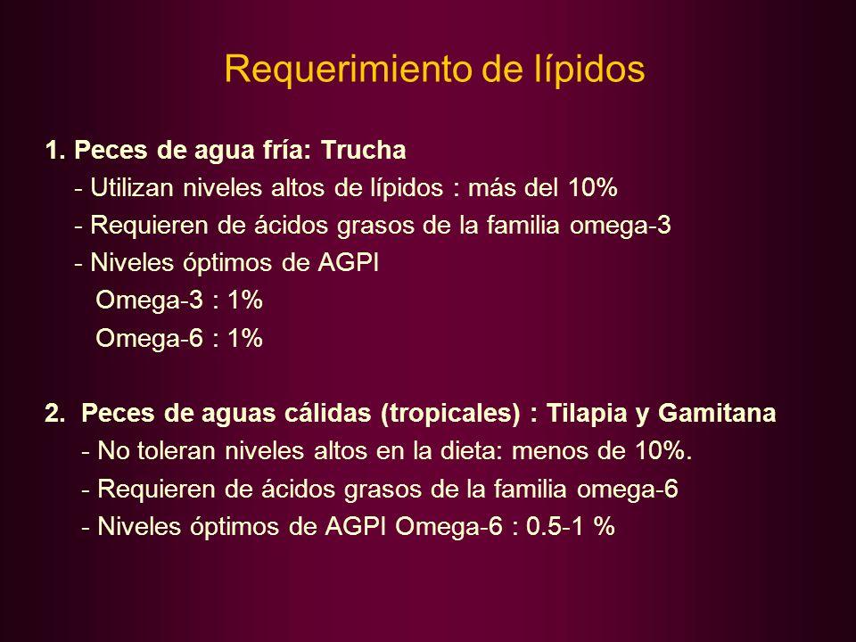 Requerimiento de lípidos 1. Peces de agua fría: Trucha - Utilizan niveles altos de lípidos : más del 10% - Requieren de ácidos grasos de la familia om