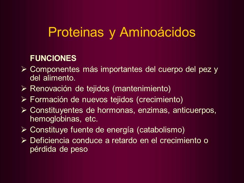 Proteinas y Aminoácidos FUNCIONES Componentes más importantes del cuerpo del pez y del alimento. Renovación de tejidos (mantenimiento) Formación de nu