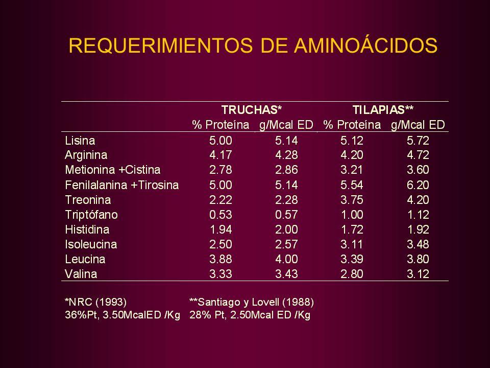 REQUERIMIENTOS DE AMINOÁCIDOS
