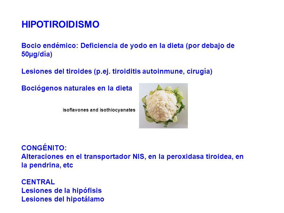 HIPOTIROIDISMO Bocio endémico: Deficiencia de yodo en la dieta (por debajo de 50µg/día) Lesiones del tiroides (p.ej. tiroiditis autoinmune, cirugía) B