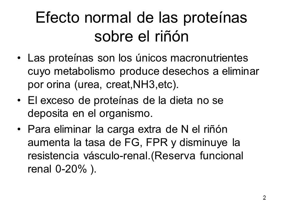 2 Efecto normal de las proteínas sobre el riñón Las proteínas son los únicos macronutrientes cuyo metabolismo produce desechos a eliminar por orina (u