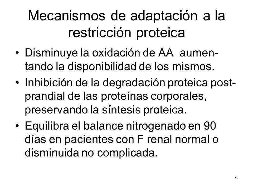 4 Mecanismos de adaptación a la restricción proteica Disminuye la oxidación de AA aumen- tando la disponibilidad de los mismos. Inhibición de la degra