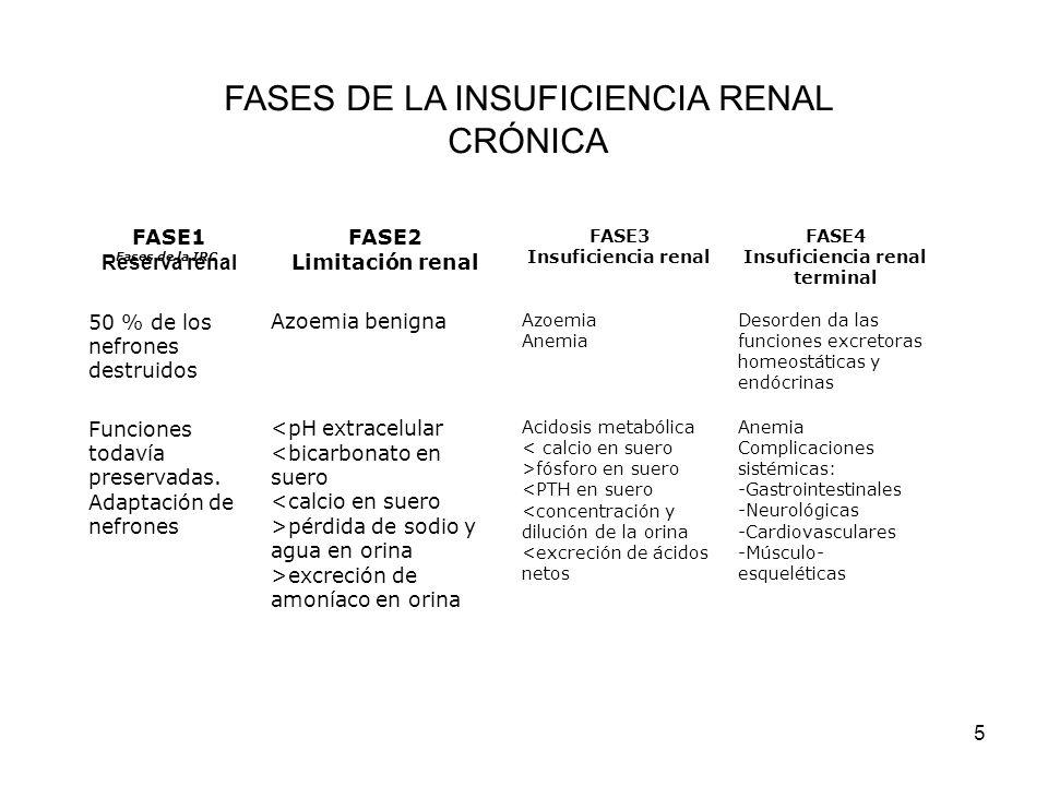 5 Fases de la IRC FASE1 Reserva renal FASE2 Limitación renal FASE3 Insuficiencia renal FASE4 Insuficiencia renal terminal 50 % de los nefrones destrui