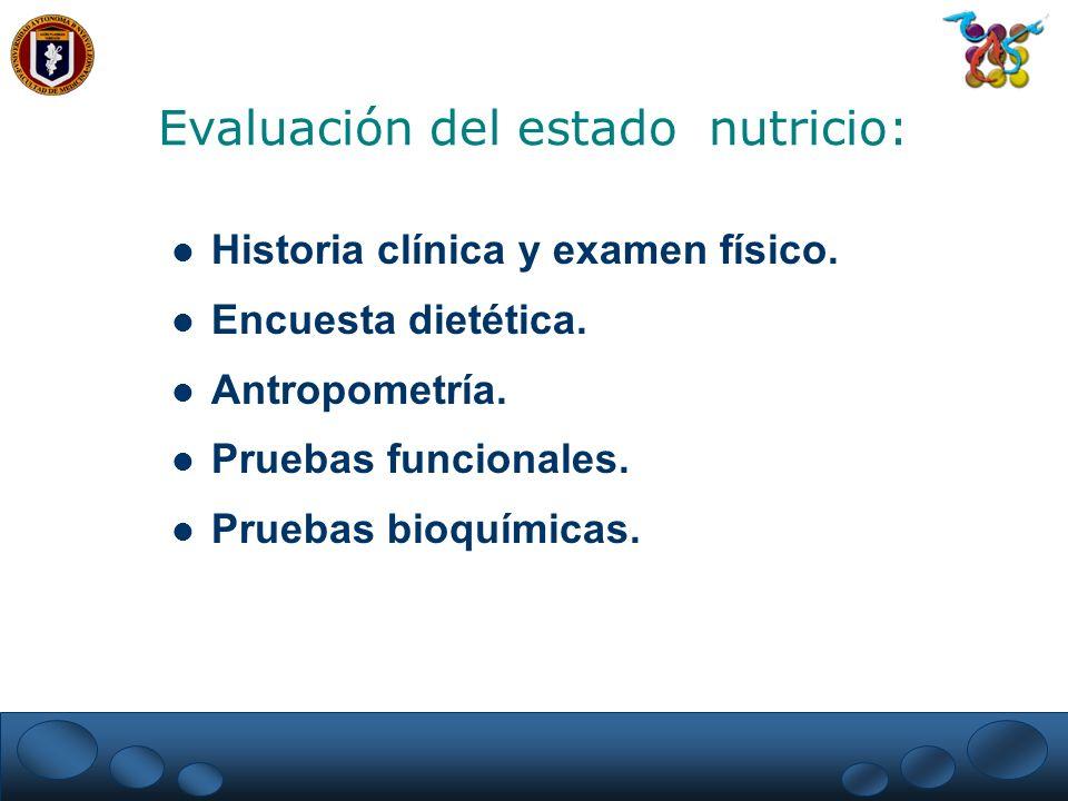 Historia clínica y examen físico. Encuesta dietética. Antropometría. Pruebas funcionales. Pruebas bioquímicas. Evaluación del estado nutricio: