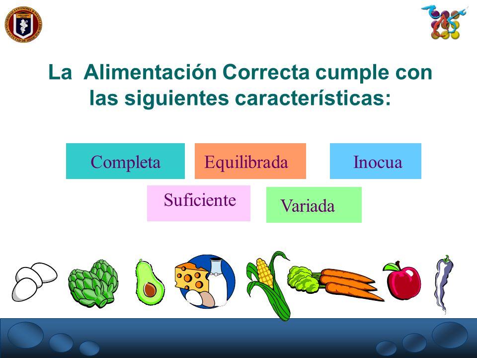 Completa Equilibrada Inocua Variada La Alimentación Correcta cumple con las siguientes características: Suficiente