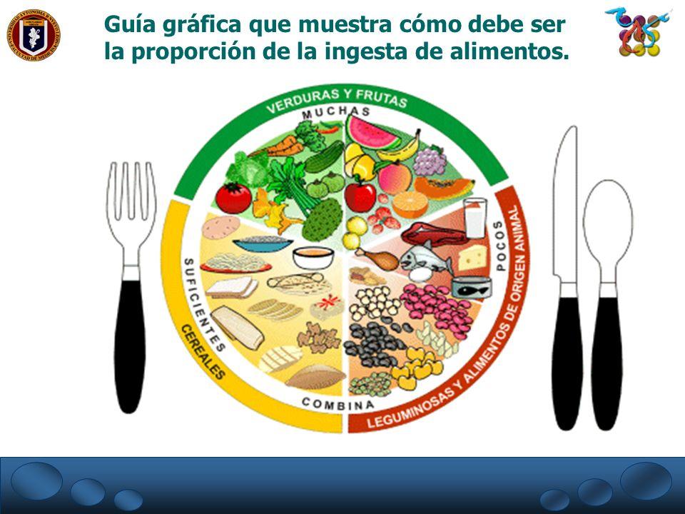 PLATO DEL BUEN COMER Guía gráfica que muestra cómo debe ser la proporción de la ingesta de alimentos.