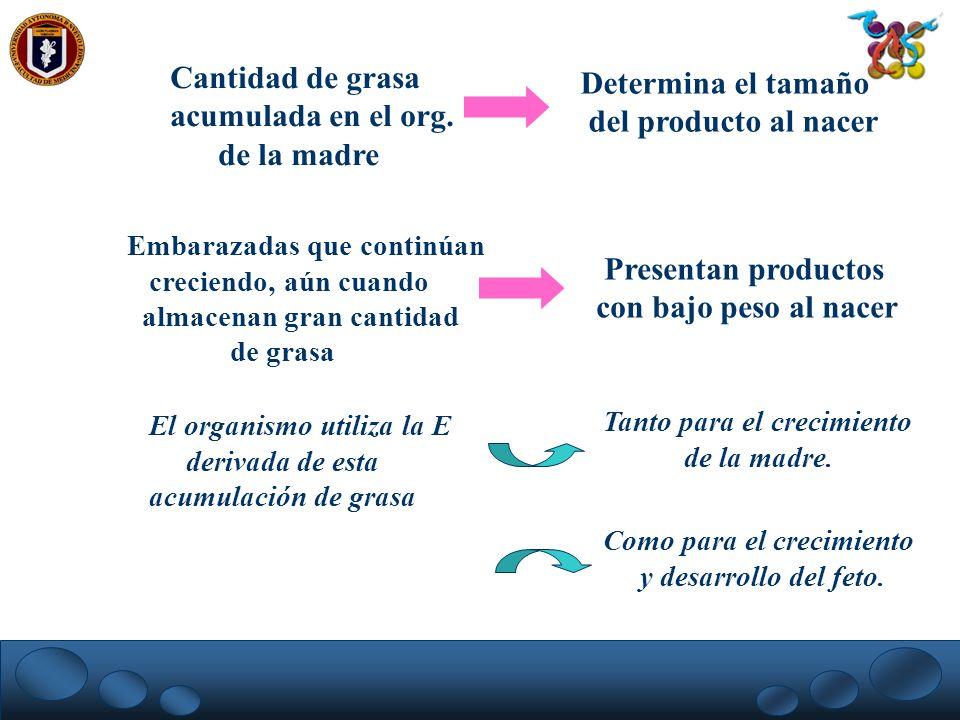 Cantidad de grasa acumulada en el org. de la madre Determina el tamaño del producto al nacer Embarazadas que continúan creciendo, aún cuando almacenan
