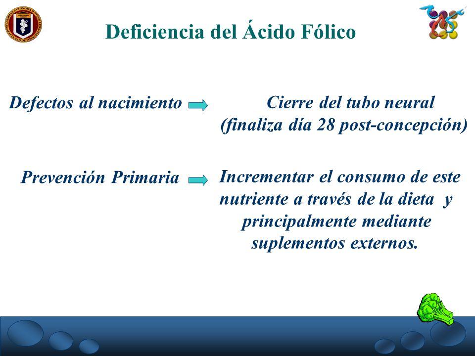 Deficiencia del Ácido Fólico Defectos al nacimiento Cierre del tubo neural (finaliza día 28 post-concepción) Prevención Primaria Incrementar el consum