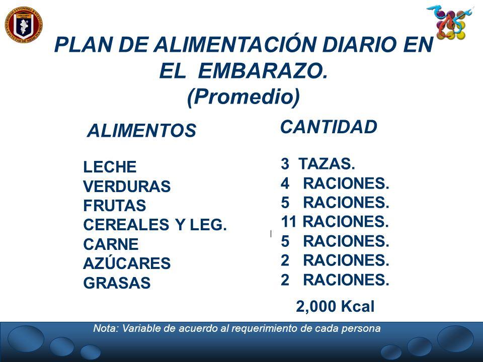 PLAN DE ALIMENTACIÓN DIARIO EN EL EMBARAZO. (Promedio) ALIMENTOS CANTIDAD LECHE VERDURAS FRUTAS CEREALES Y LEG. CARNE AZÚCARES GRASAS 3 TAZAS. 4 RACIO