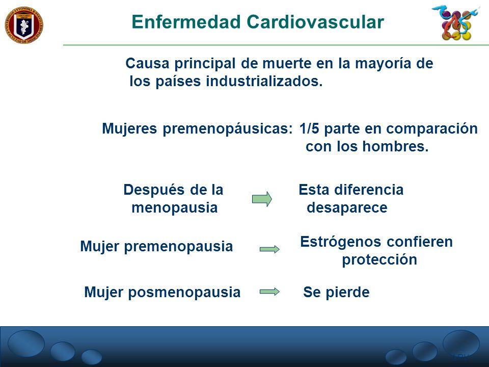 LRV. Enfermedad Cardiovascular Causa principal de muerte en la mayoría de los países industrializados. Mujeres premenopáusicas: 1/5 parte en comparaci