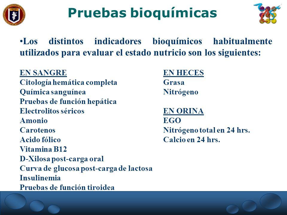 Pruebas bioquímicas Los distintos indicadores bioquímicos habitualmente utilizados para evaluar el estado nutricio son los siguientes: EN SANGREEN HEC