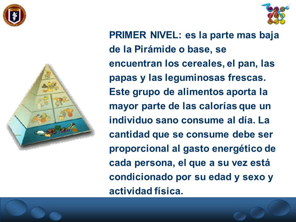 PRIMER NIVEL: es la parte mas baja de la Pirámide o base, se encuentran los cereales, el pan, las papas y las leguminosas frescas. Este grupo de alime
