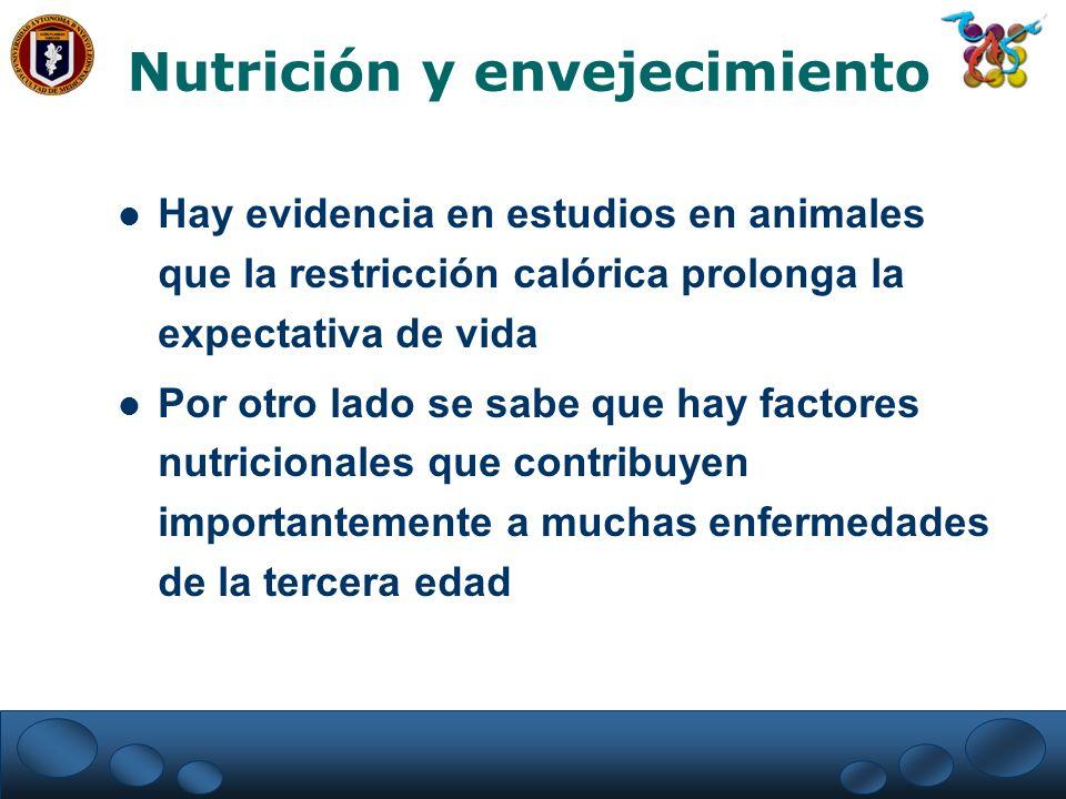 Nutrición y envejecimiento Hay evidencia en estudios en animales que la restricción calórica prolonga la expectativa de vida Por otro lado se sabe que
