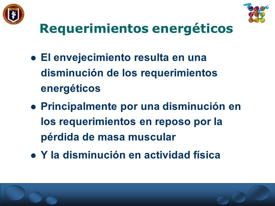 Requerimientos energéticos El envejecimiento resulta en una disminución de los requerimientos energéticos Principalmente por una disminución en los re