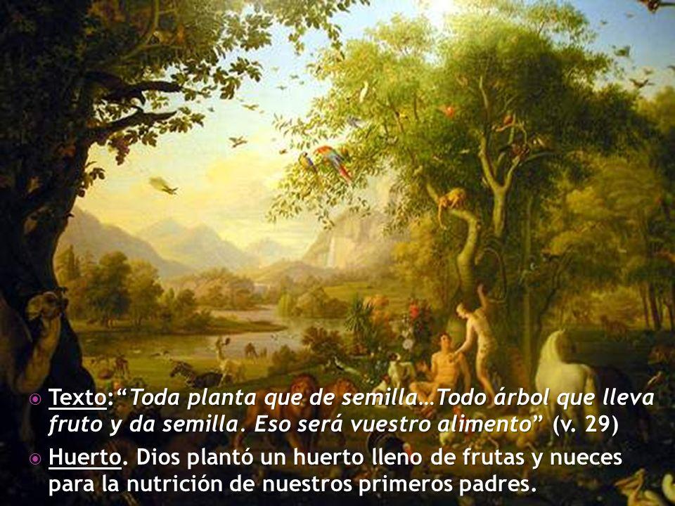 Texto:Toda planta que de semilla…Todo árbol que lleva fruto y da semilla. Eso será vuestro alimento (v. 29) Texto:Toda planta que de semilla…Todo árbo