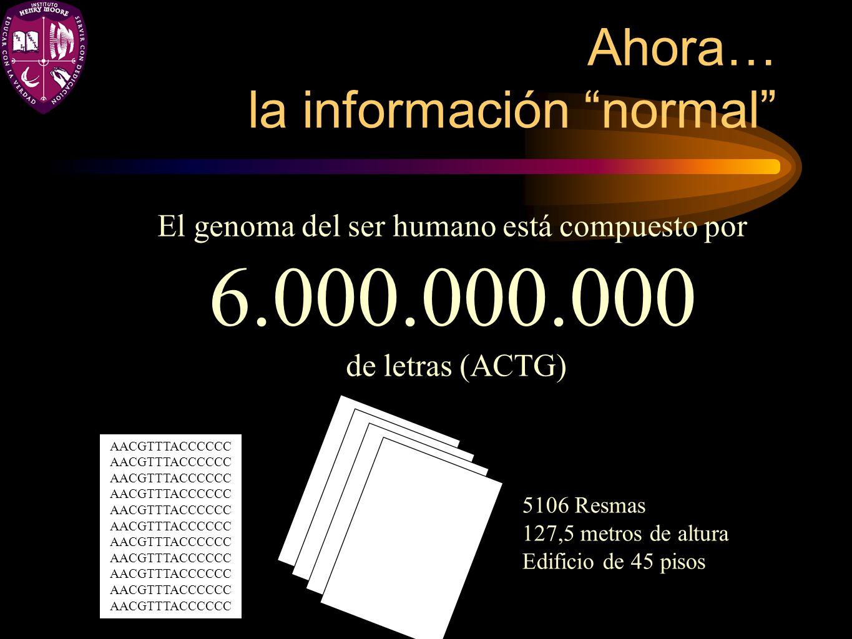 Ahora… la información normal El genoma del ser humano está compuesto por 6.000.000.000 de letras (ACTG) AACGTTTACCCCCC 5106 Resmas 127,5 metros de alt
